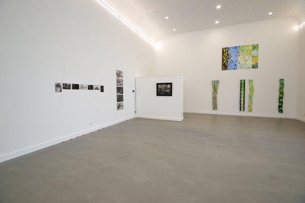install expo nikki en rozemarijn 1235