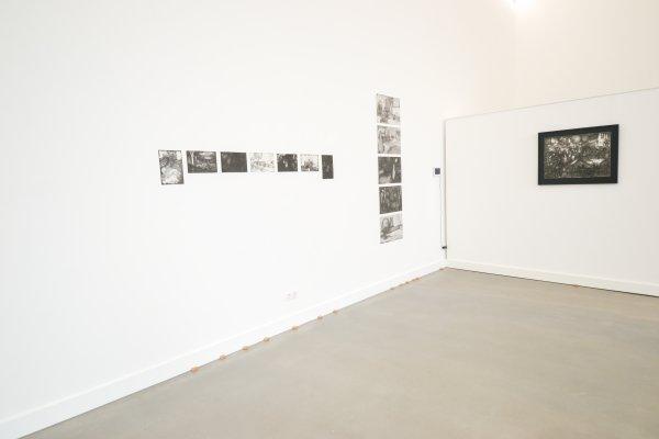 install expo nikki en rozemarijn 1247