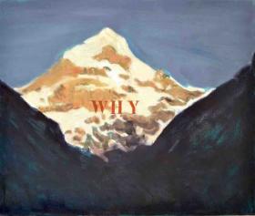 O-68 Johan Clarysse Suspicious landscapes series Why