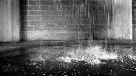 video-downstream-inge-reisberman-800px