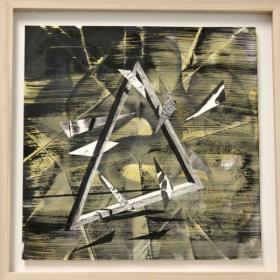 o-68 Lenneke van der Goot, triangle web2