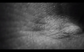 o-68 Aracelly Scheper 2020 Meditar Imagen Reflexionar