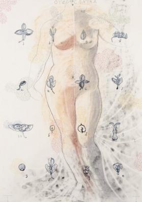 O-68 Terry Thompson 'Contrapposto' series, II, mixed media on paper, 100 X 70 cm, 2015 web