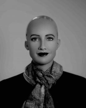 5.Sophia. Hanson Robotics Ltd. Hong Kong 2016 ©Wanda Tuerlinckx web